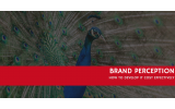 How Do I Develop Brand Perception Cost Effectively?