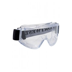 "Photo of a ""Challenger"" Panoramic Safety Goggles"