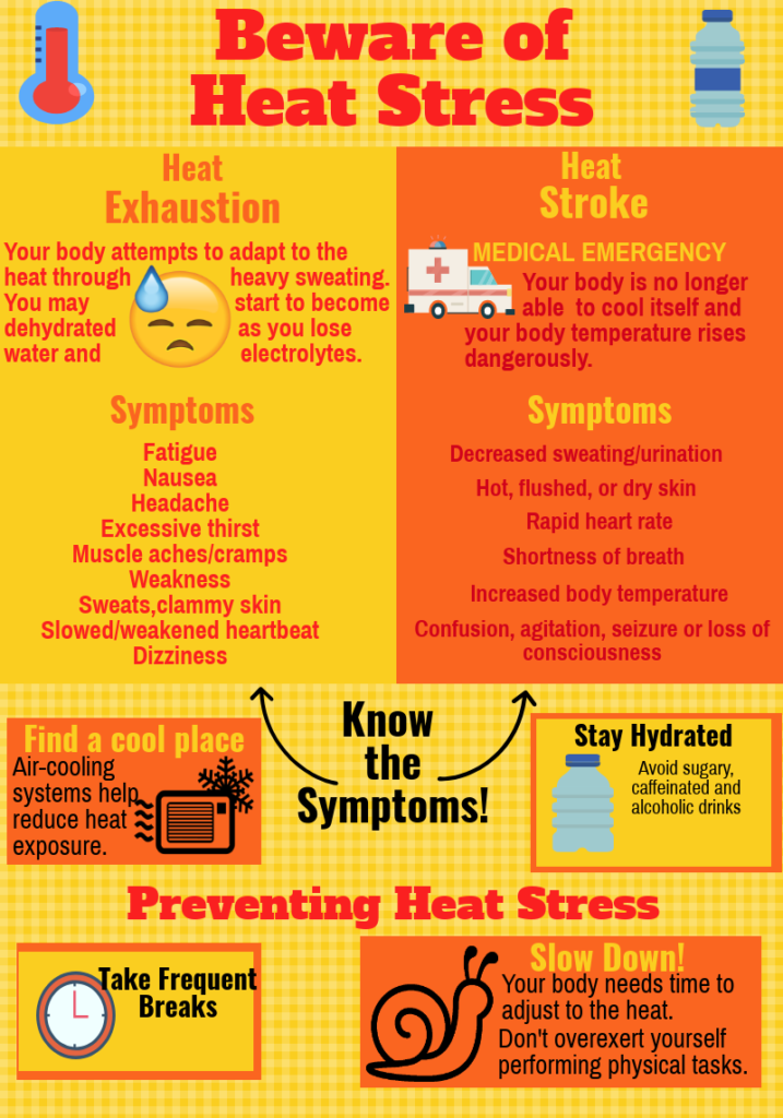 Image shows symptoms of heat stress and how to prevent