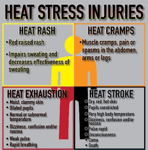 Signs of heat stress