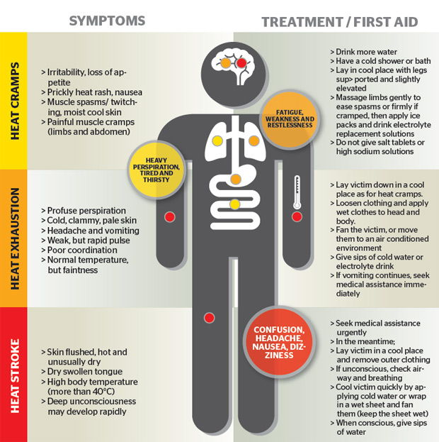 Image shows different symptoms of heat stress and treatments